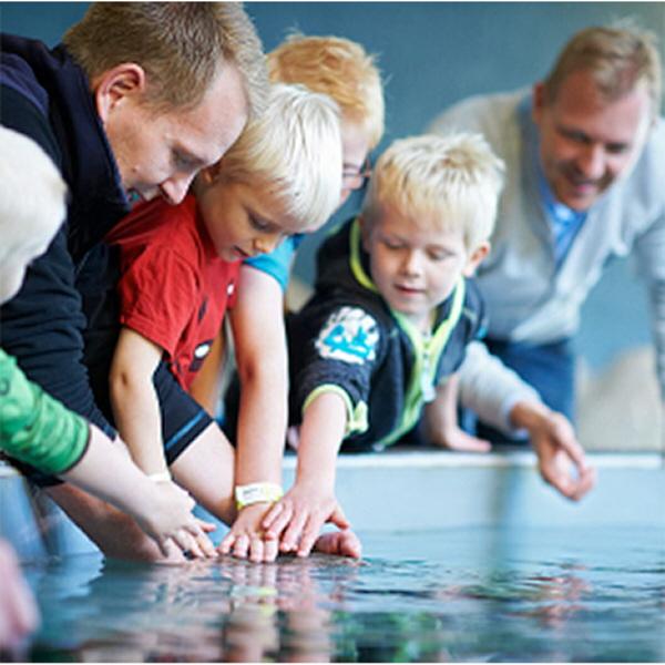 intime massage i nordjylland københavn zoo rabat