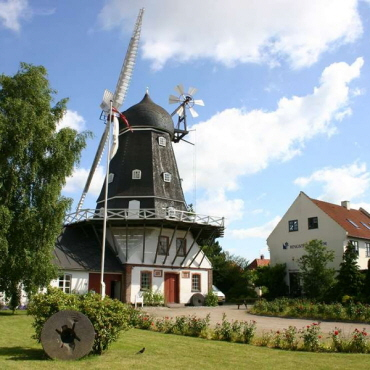 Ringsted Museum