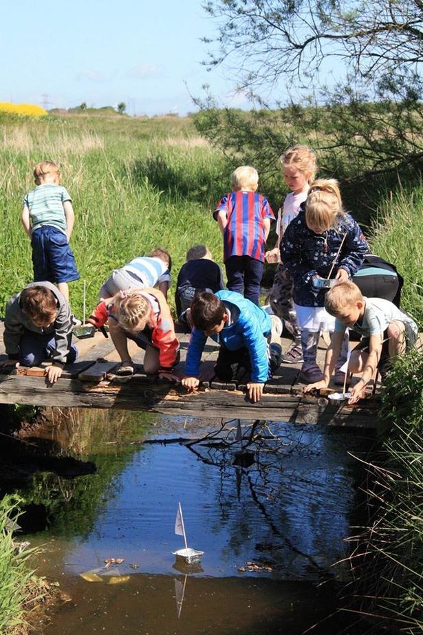 Der starter ca. 145 børn på Vestbyen Friskole efter sommerferien.
