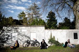 Københavns Kommune er imod at Assistens Kirkegård på Nørrebro i København bliver fredet. Kirkegården bruges af mange til hundeluftning, spadsereture eller soldyrkning.
