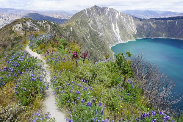 Gule, lilla og blå. På bjergsiderne er blomster spredt med løs hånd, og det er nemt at fortabe sig så meget i den fina flora, at man kan komme til at snuble over sine egne fødder.
