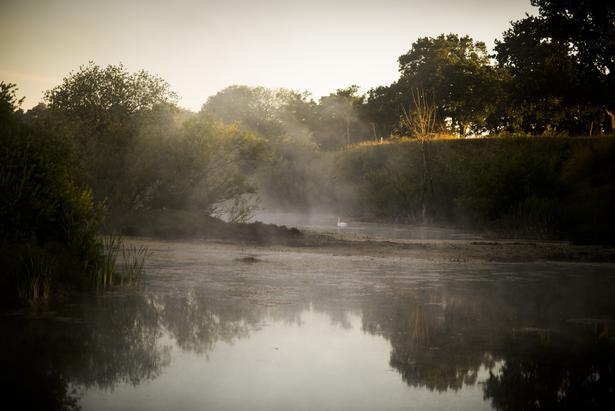 Det er denne sø, hvor Emilie Meng blev fundet død.