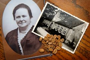 Birthe Steenbergs farmor gemte kaffebønnerne på loftet på Heddingegård på Stevns.