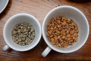 De gule bønner er 100 år gamle. Når kaffebønner er friske, er de grønlige og dufter af hø.