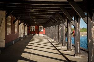 Pernille Kaalund - Christianshavn lokaludvalg