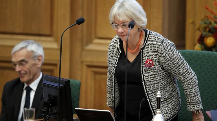 Pia Kjærsgaard skred ind over for Enhedslistens Pelle Dragsted, som under en debat i folketingssalen i dag beskyldte DF's Kenneth Kristensen Berth for at komme med racistiske udtalelser.