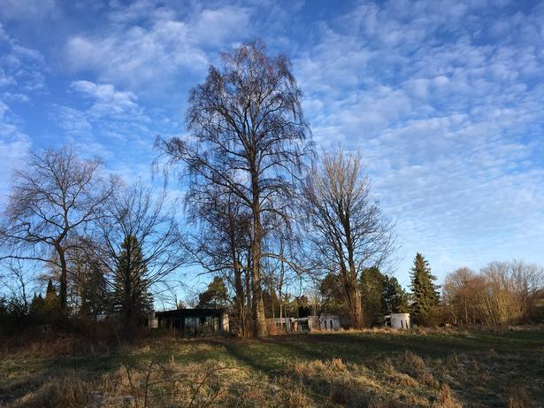Husrække tegnet af Max Brüel, Gehrd Bornebusch, Jørgen Selchau og Henning Larsen arkitekter, set fra Søllerød Naturpark. Den midterste villa er ejet af Rudersdal Kommune. I forbindelse med salg af den,  ønsker kommunen nu at ophæve den deklaration, som hele husrækken er omfattet af, og som siden 1959 har begrænset byggehøjden til en etage af hensyn til naturværdierne i den tilgrænsende park.