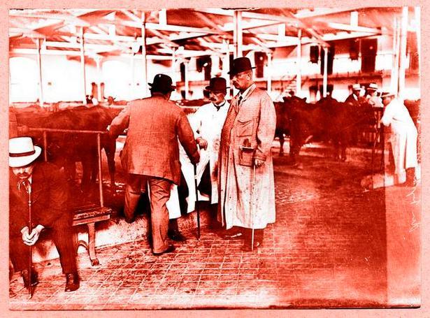 Gullaschbaronerne tjente tykt på stigende kvægpriser under Første Verdenskrig, men chokerede det pæne selskab med deres mangel på dannelse. Her opkøber den ukronede konge af det københavnske kvægtorv, N.P. Nielsen (til højre) – kendt som Berliner-Nielsen – kvæg til det tyske marked i 1914.