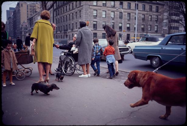 Garry Winogrand/Garry Winogrand Archive/Gift of the artist