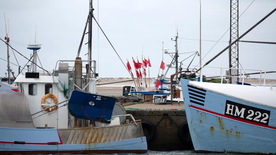 Vi kan ende som fiskere uden fisk...