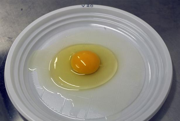 hvor længe kan æg holde sig efter sidste salgsdato