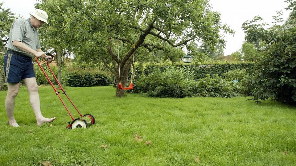 hvornår kan man slå græs