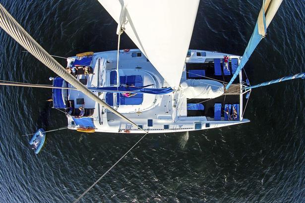 Selv om 'Nemo 1' er en lille båd, er der mange forskellige muligheder for bedst at se efter dyreliv – fra nettene i spidsen af katamaranen til soldækket på toppen.