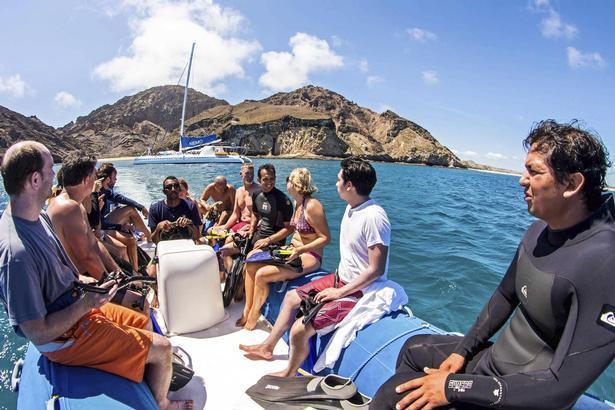 Livet under havoverfladen skal udforskes - et mekka for dyreelskere!