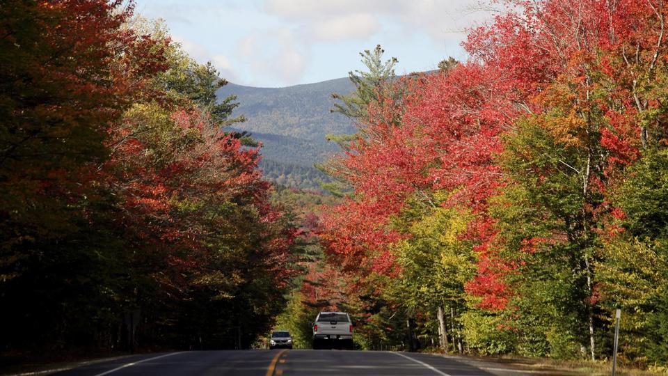 Efterår i USA: Træerne står i en palet af gult, orange og